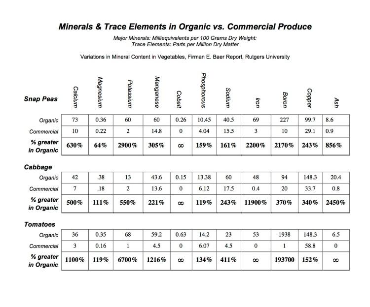 Organic Chart-Rutgers Reduced.pdf